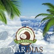 nardias kokosnuss web start palme