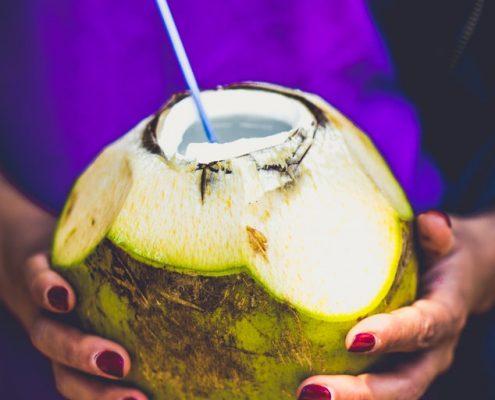 Grüne Kokosnuss